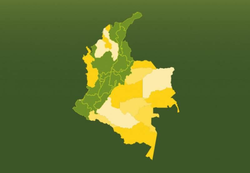 590 municipios productores de café